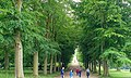 Allee, looking towards Blanche's vase - Chatsworth House - Derbyshire, England - DSC03578.jpg