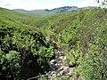 Allt Coire na Sorna gorge - geograph.org.uk - 1580758.jpg