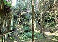 Alter Steinbruch in der Fürstenleite - panoramio.jpg