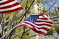 American Flag with trees and buildings.jpg
