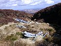 American aircraft wreckage from ww2,near Braydon crags - geograph.org.uk - 1254793.jpg