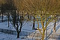 Amsterdam Noord - 12-2012 - panoramio.jpg