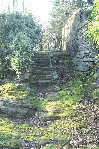 Listed buildings in Mawdesley - Image: Ancient steps geograph.org.uk 104264