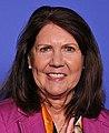 Ann Kirkpatrick 116th Congress (cropped).jpg