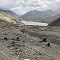 Annapurna Conservation Area, Jomsom, Mustang District, Nepal Part Two 12.jpg