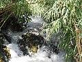 Antalya waterfall - Antalya - 2010 - panoramio (1).jpg