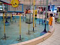 Aquatic Exhibits - Dynamotion Hall - Science City - Kolkata 2006-08-25 05155.JPG