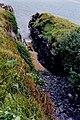 Ards Forest Peninsula - Walk along southern shore - geograph.org.uk - 1327546.jpg
