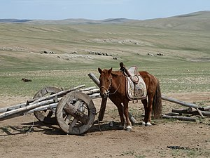 Arkhust - Mongolian horse and cart in Arkhurt