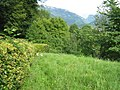 Austria august2010 0181.jpg