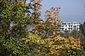 Autumn in Georgia, Tbilisi City 15.jpg