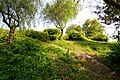 Azhar park 2 - panoramio.jpg