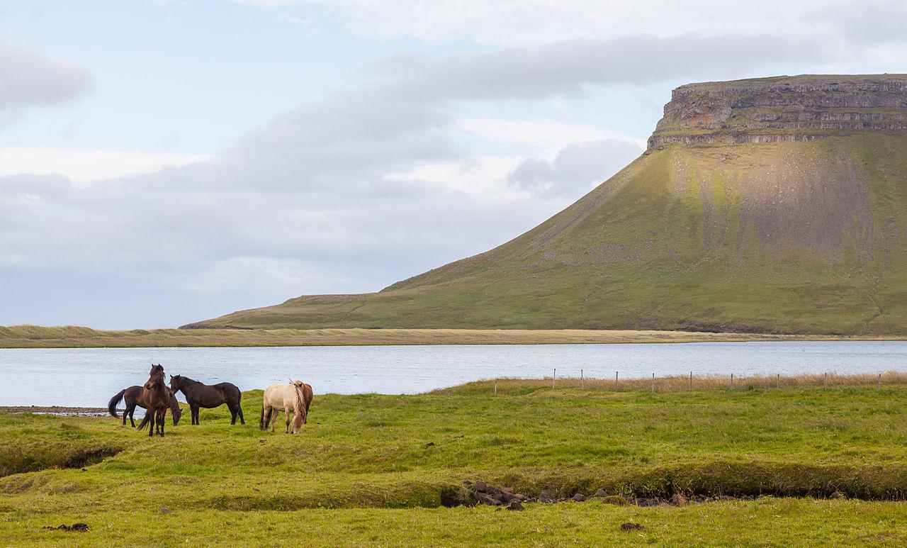 Skedabúlandshöfði, Vesturland, Islandia, 20140814, Dd