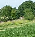 Bahnlinie nach Grünstadt - panoramio.jpg