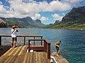 Baie de Cook - Flickr - uphillblok.jpg
