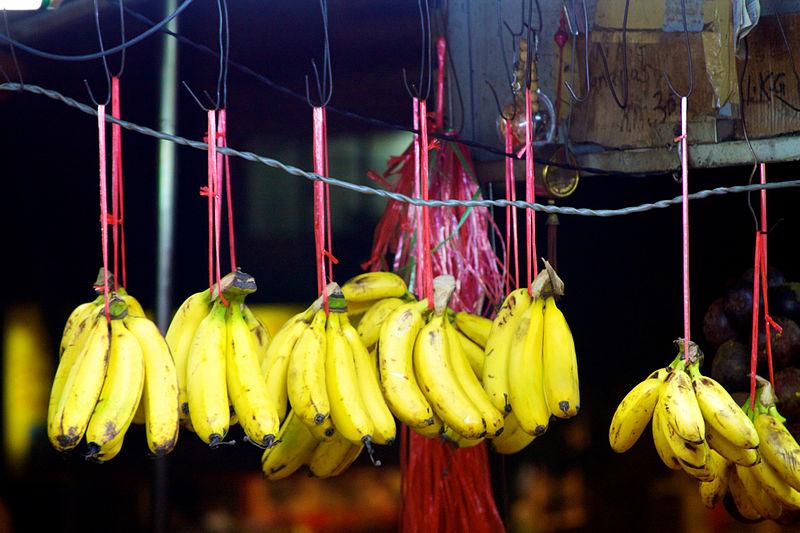 Ilustrasi menggantung pisang.