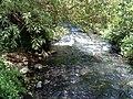 Banias River07.JPG