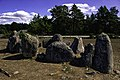 Barco de pedra en Gålrums gravfält.jpg