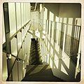 Barnard College Diana Center-INTERIORS.jpg