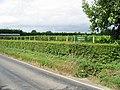 Barnsole vineyard on Flemming Road - geograph.org.uk - 946677.jpg