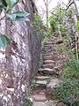 Barrenjoey path.jpg