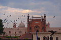 Bashahi mosque and birds....JPG
