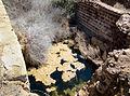 Baths at Abu Mena (XVI).jpg
