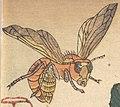 Bee art detail, from- MET DP121468 (cropped).jpg