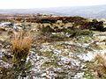 Bell Pit, Overlooking Rosedale Head - geograph.org.uk - 136024.jpg