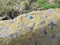 Benchmark on the stone - geograph.org.uk - 1722860.jpg