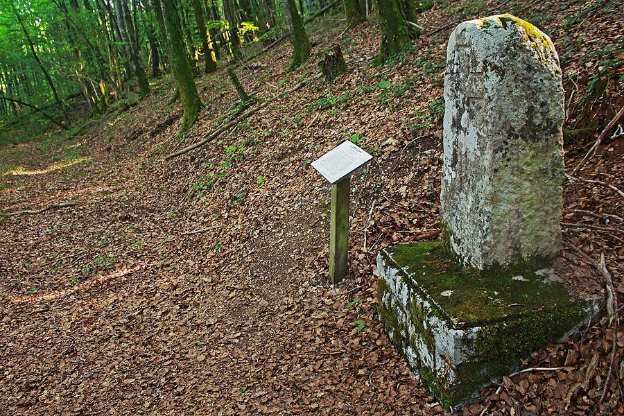 Templar stone marker between Beneuvre and Bures-Les-Templiers