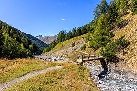 Bergtocht van Prasüras,door het Val Trupchun naar Alp Purcher 18-09-2019. (d.j.b) 04.jpg