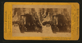 Big Trees, from Robert N. Dennis collection of stereoscopic views.png