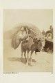 """Bild ur Johanna Kempes samling från resan till Algeriet och Tunisien, 1889-1890. """"Bärstol (Bassour) - Hallwylska museet - 91805.tif"""