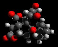Bilobalido 3d strukture.png