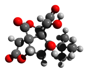 Bilobalide - Image: Bilobalide 3d structure