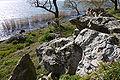Biwako Quasi-National Park Omihachiman03n4000.jpg