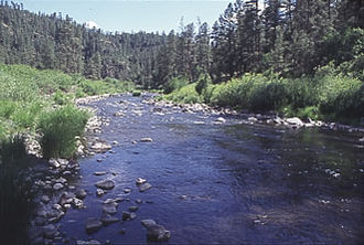 Black River (Arizona) - Black River