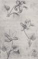 Blumen-Drei (Meister der Spielkarten).png