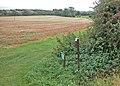 Bo-peep farm - geograph.org.uk - 841466.jpg