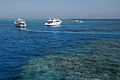 Boats in the corals of Red Sea.jpg