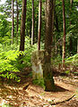 Borne entre la France et l'Allemagne (1830), forêt de Carling.jpg