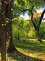 Botanička bašta Jevremovac, Beograd - Botanička bašta Jevremovac, Beograd - jesenje boje, svetlost i senke 02.jpg