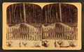 Boulder at Flume, Franconia Notch, N.H, from Robert N. Dennis collection of stereoscopic views 9.png