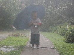 El juego de las palabras encadenadas-https://upload.wikimedia.org/wikipedia/commons/thumb/1/12/Boy_in_the_rain.JPG/250px-Boy_in_the_rain.JPG