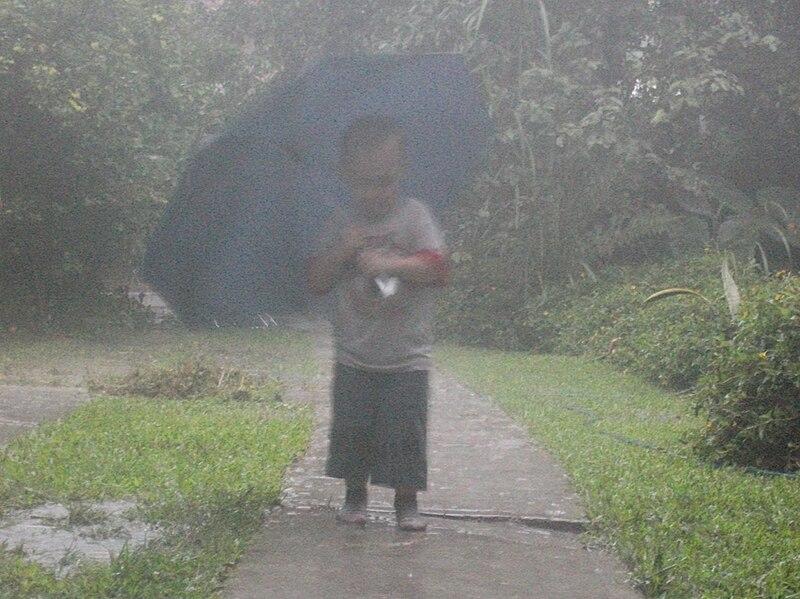 Mojáte con este post: La lluvia.