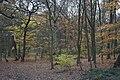 Bramley Fall Woods - geograph.org.uk - 1591228.jpg