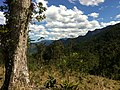Brasil Rural - panoramio (31).jpg