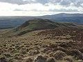 Breckonside Hill - geograph.org.uk - 354135.jpg