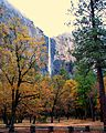 Bridalveil Fall in November (3046439679).jpg
